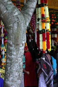 மரத்தில்  தொங்கும் பிளாஸ்டிக் பூக்கள் - நகரமயமாக்கலின் எதிரொலியோ ?