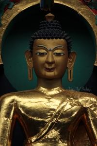 Buddha Sakyamuni.