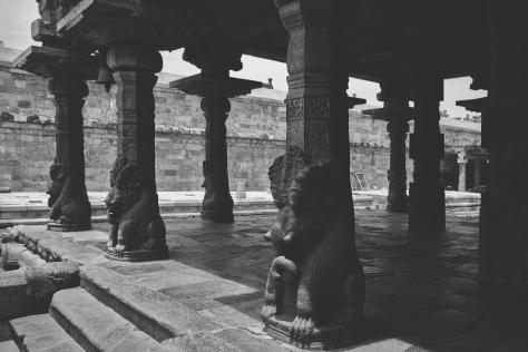 ராஜகம்பீரன் மண்டபத்தின் தூண்கள்.